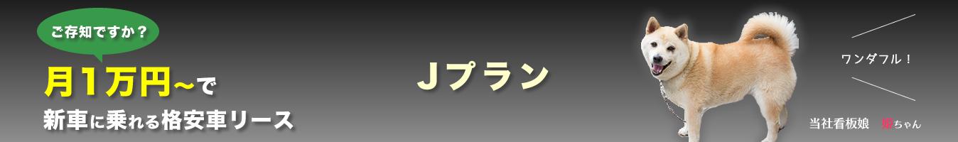 ご存知ですか?月1万円~で新車に乗れる格安車リース Jプラン ワンダフル!当社看板娘 姫ちゃん